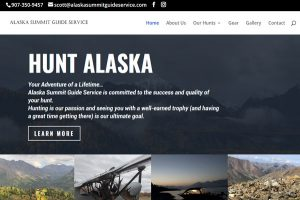 Alaska Summit Guide Service
